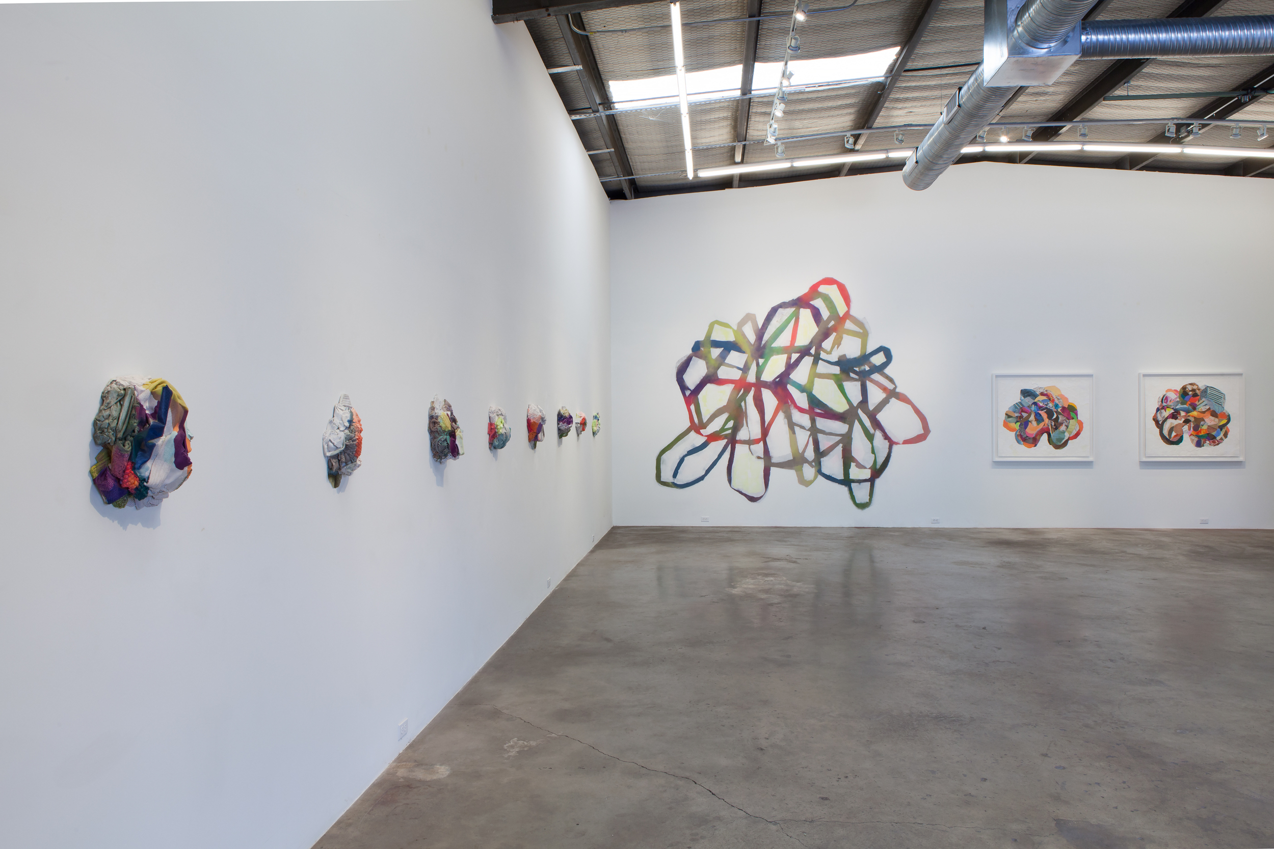 JOSEPHINE DURKIN,  Maps, Highlighters, & Flora , Installation view May 2015.