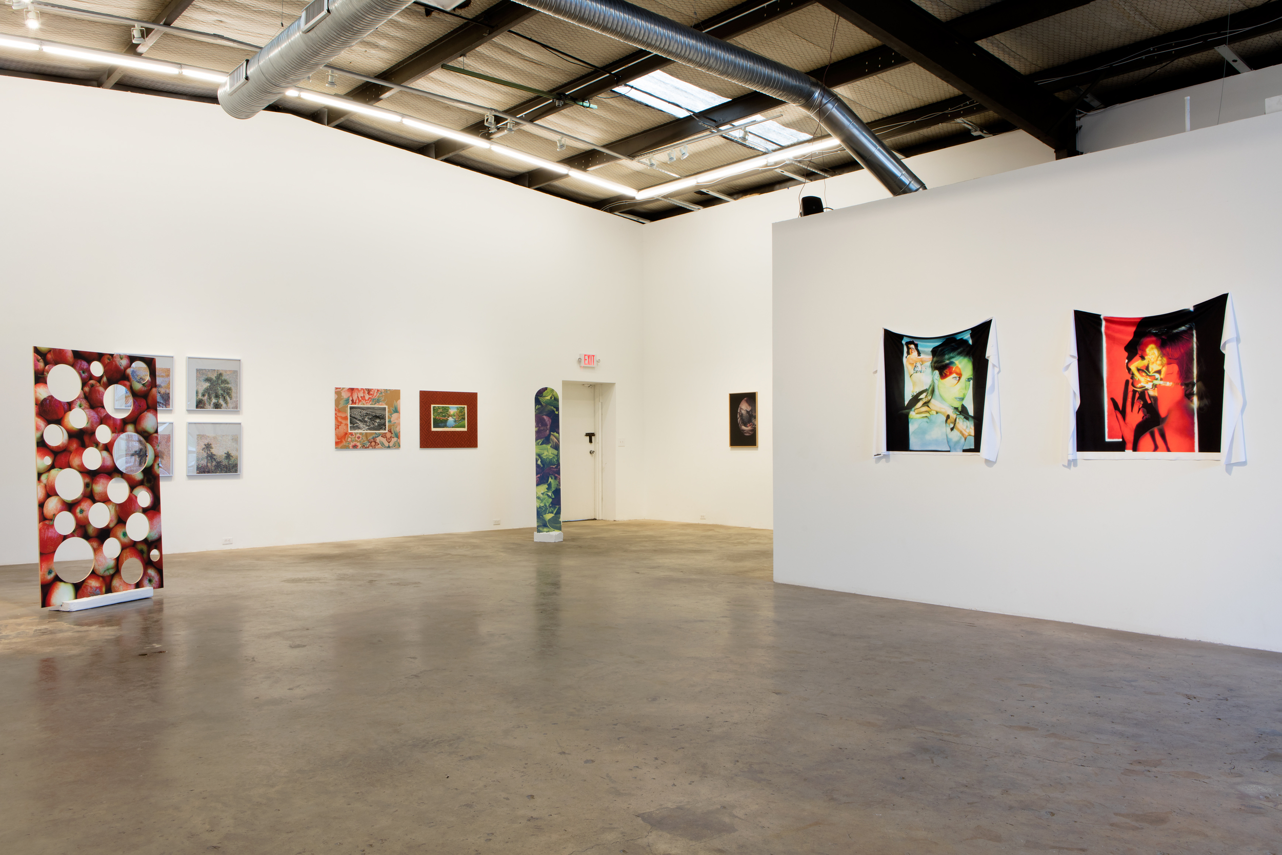 NOT PHOTOGRAPHY , Installation view, February 2016.