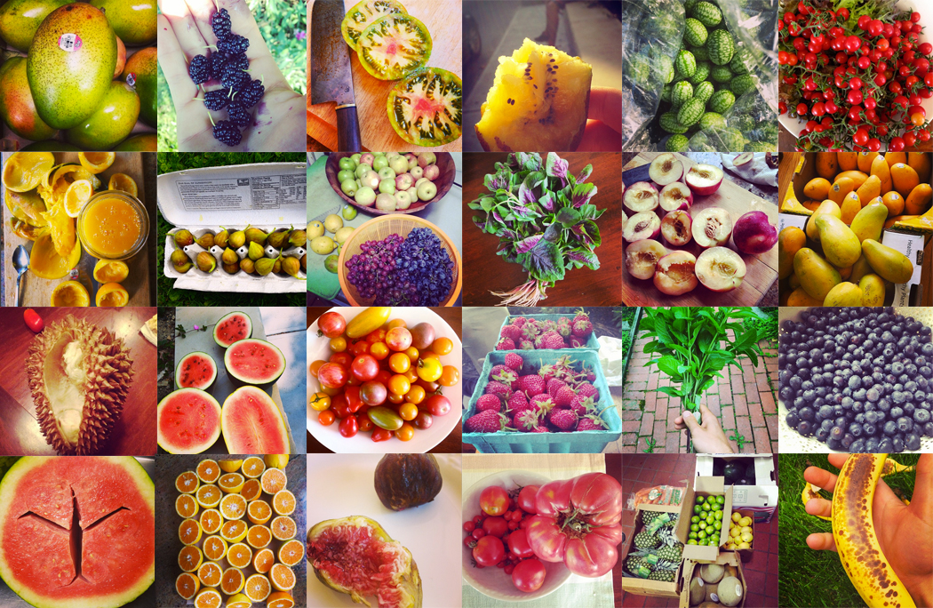 Just a few of the fruits, vegetables, and herbs that we use in all of our juices!