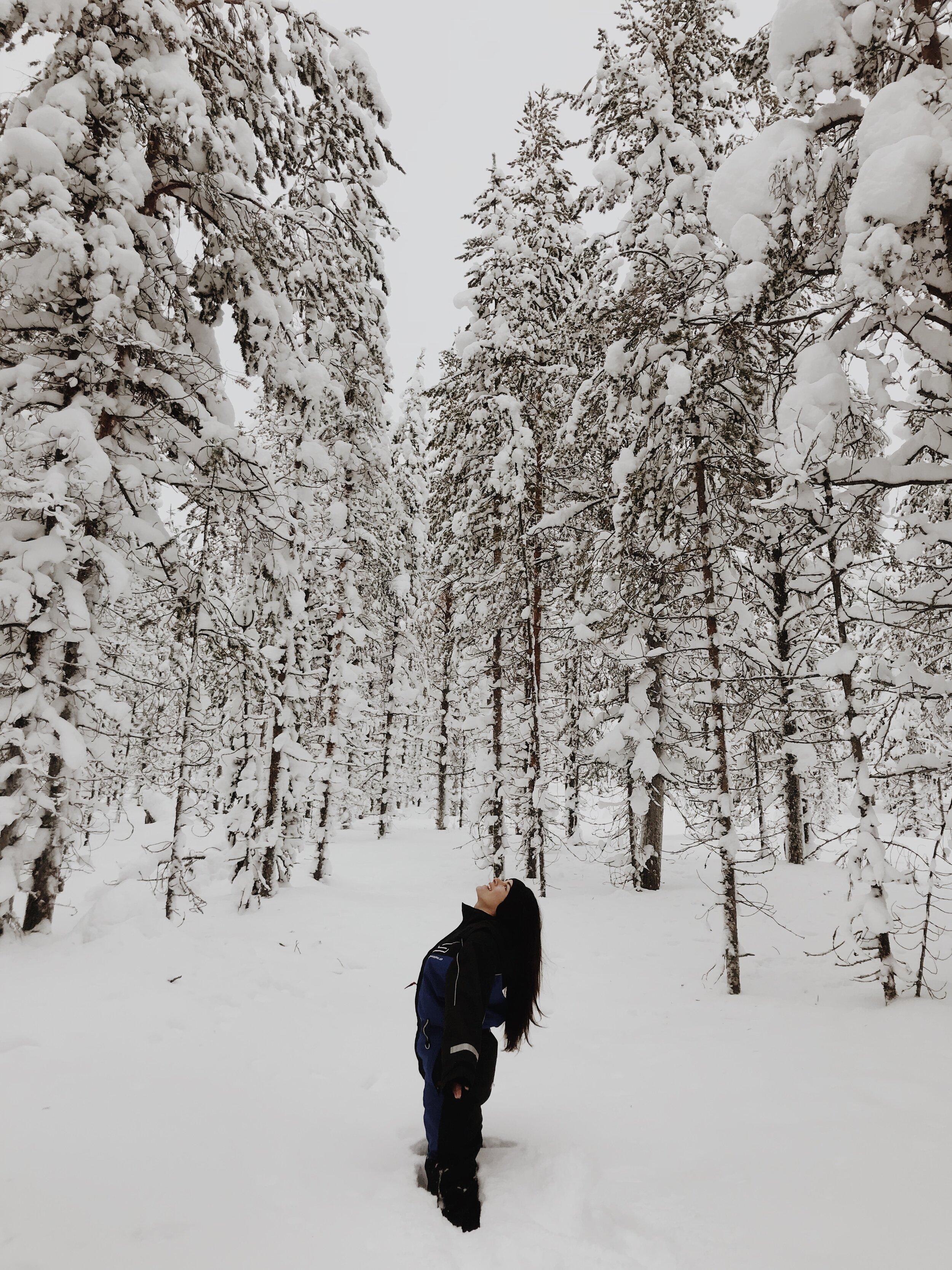 Arctic Lapland