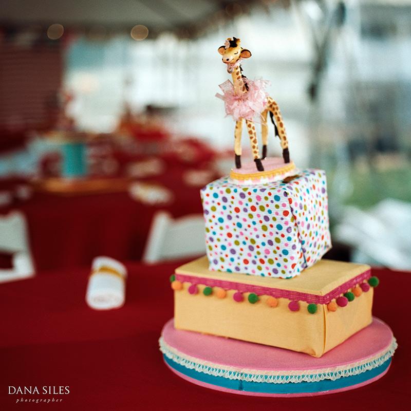 Events-Dominique-Birthday-Carnival-Dana-Siles-05.jpg