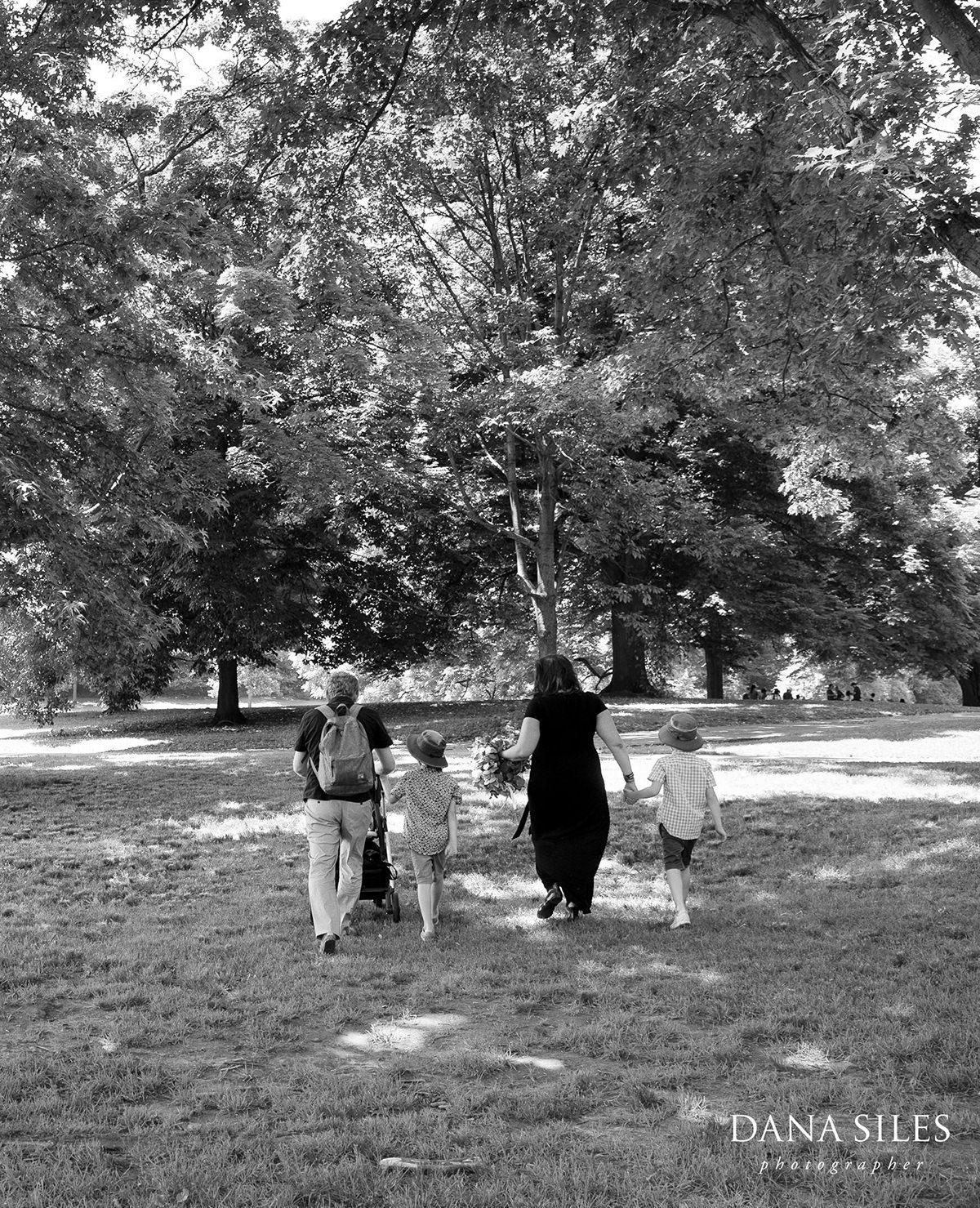 prospect-park-brooklyn-picnic