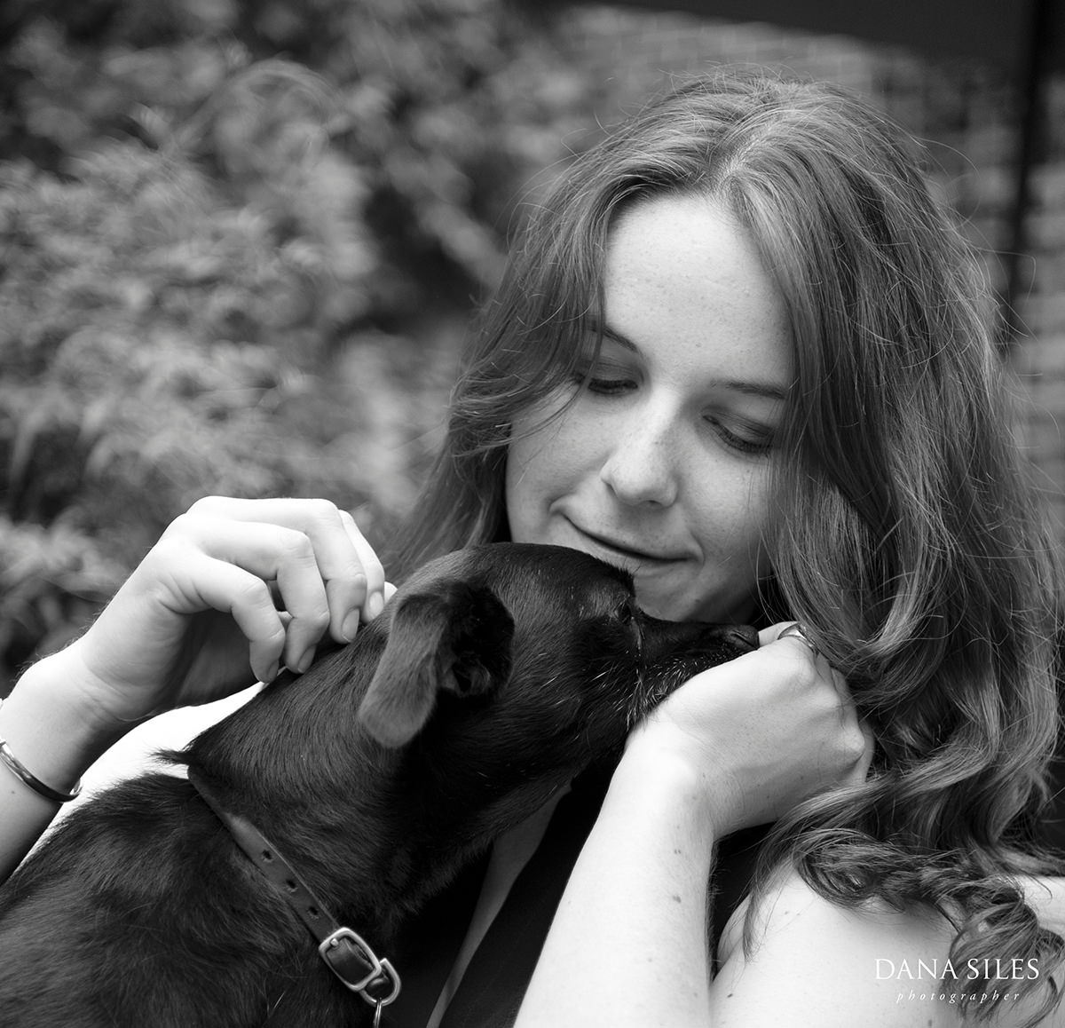 providence-rhode-island-family-portrait-session-dogs