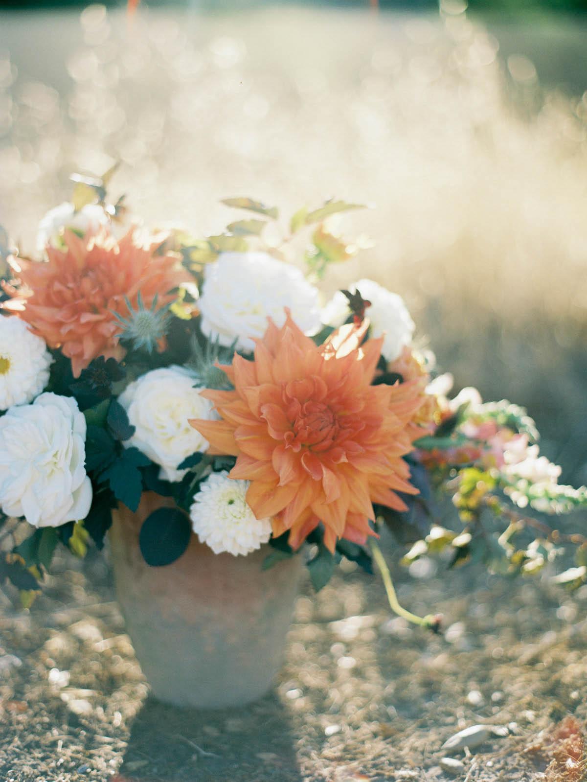 autumn-6.jpg
