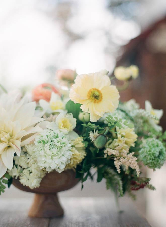 bloom-w-me-12.jpg