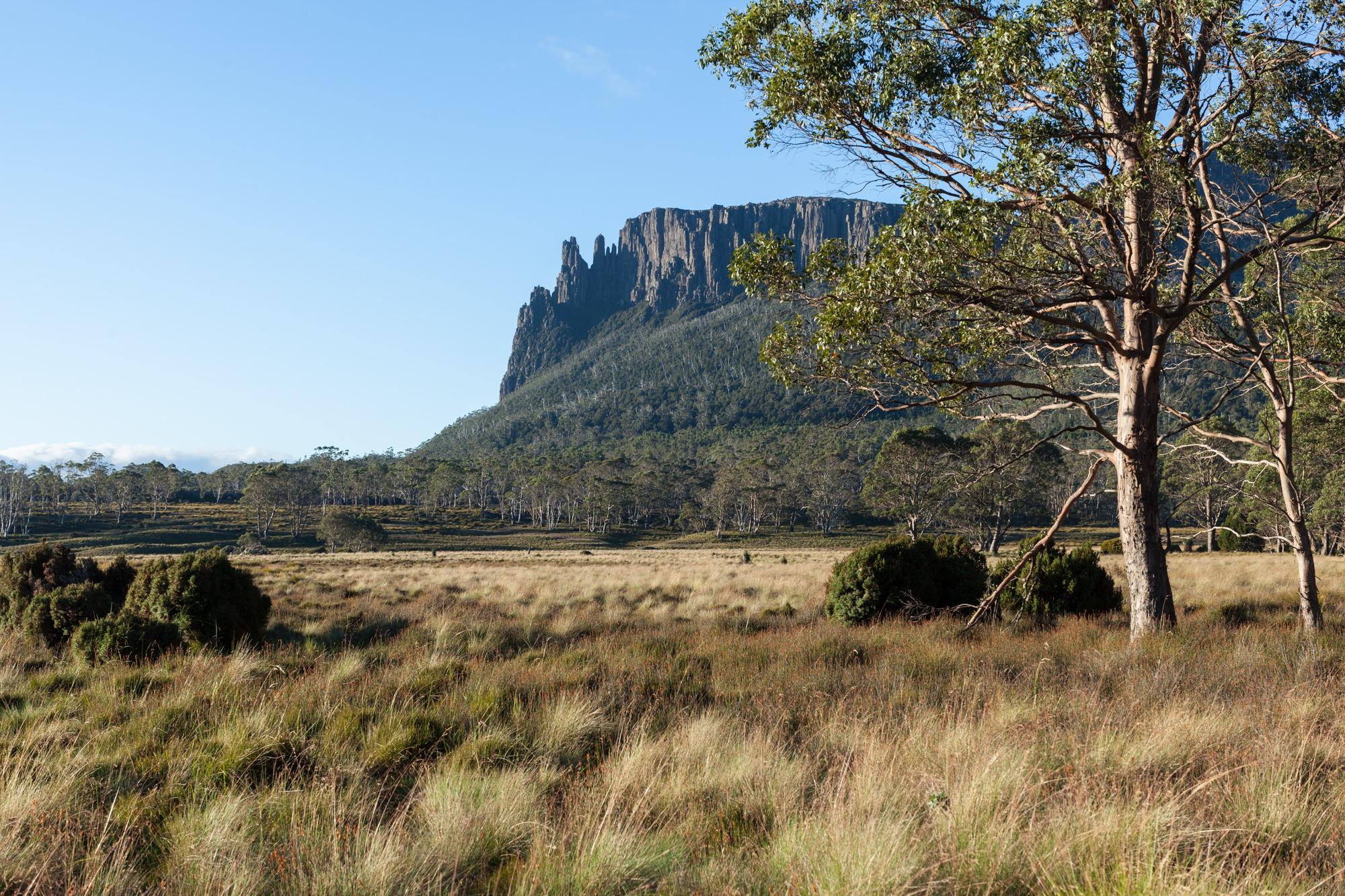 Tasmania_2015_160_2000PX.jpg