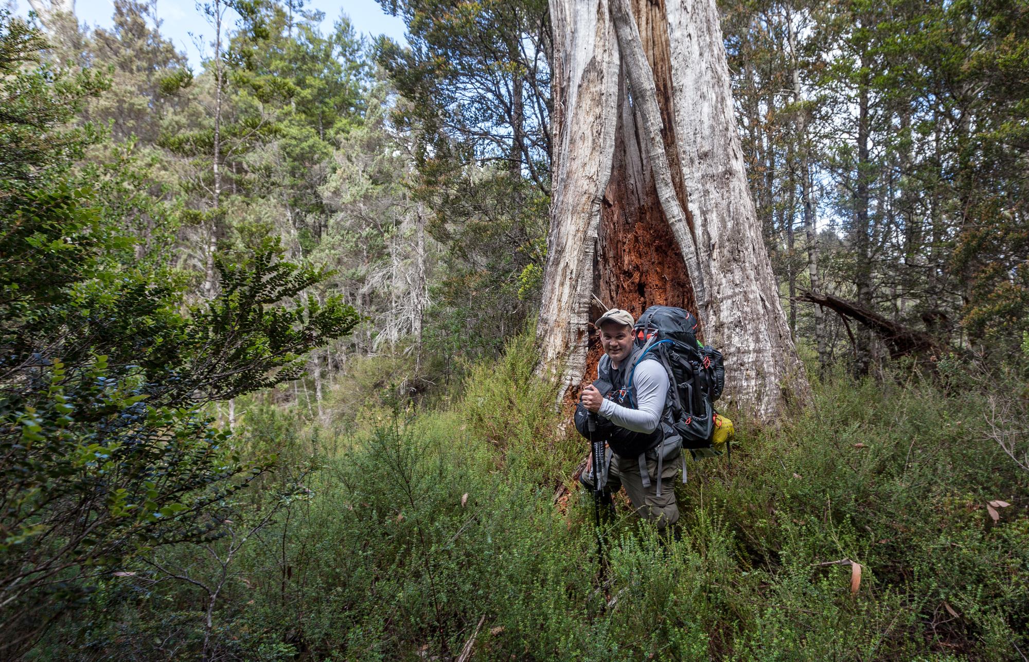 Tasmania_2015_144_2000PX.jpg