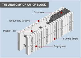 anatomy of icf.jpeg
