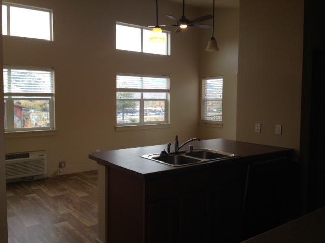 kitchen to living unit 207.JPG