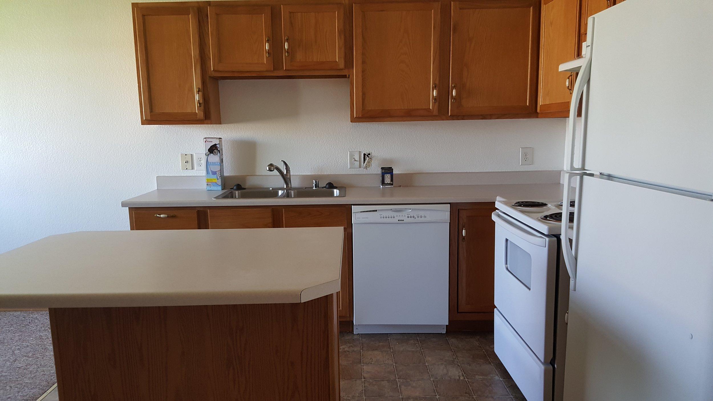 Kitchen Wyoming.jpg