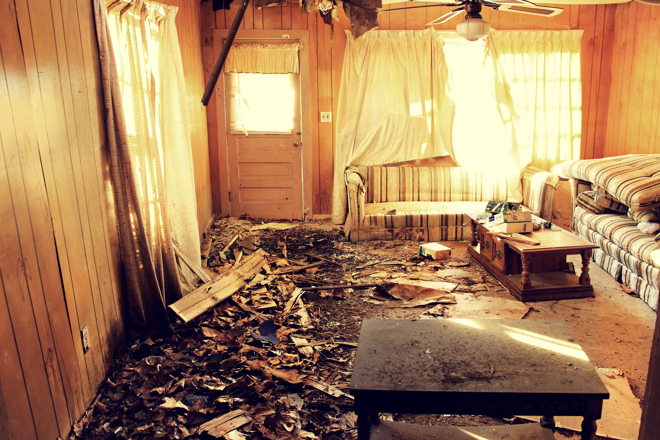 Beautiful Decay 1.jpg