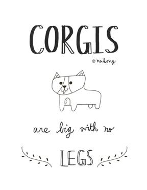 corgi_quote_neikong.png