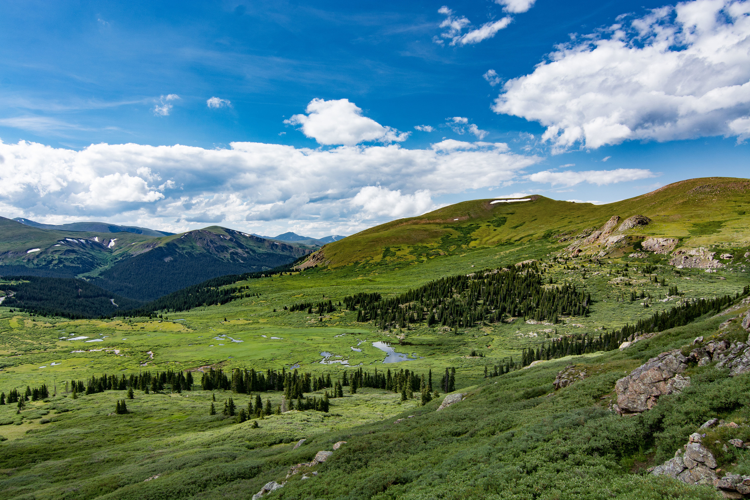 At the foot of Mt. Bierstadt, Front Range, Rocky Mountains. Beauty at 12,000 feet.