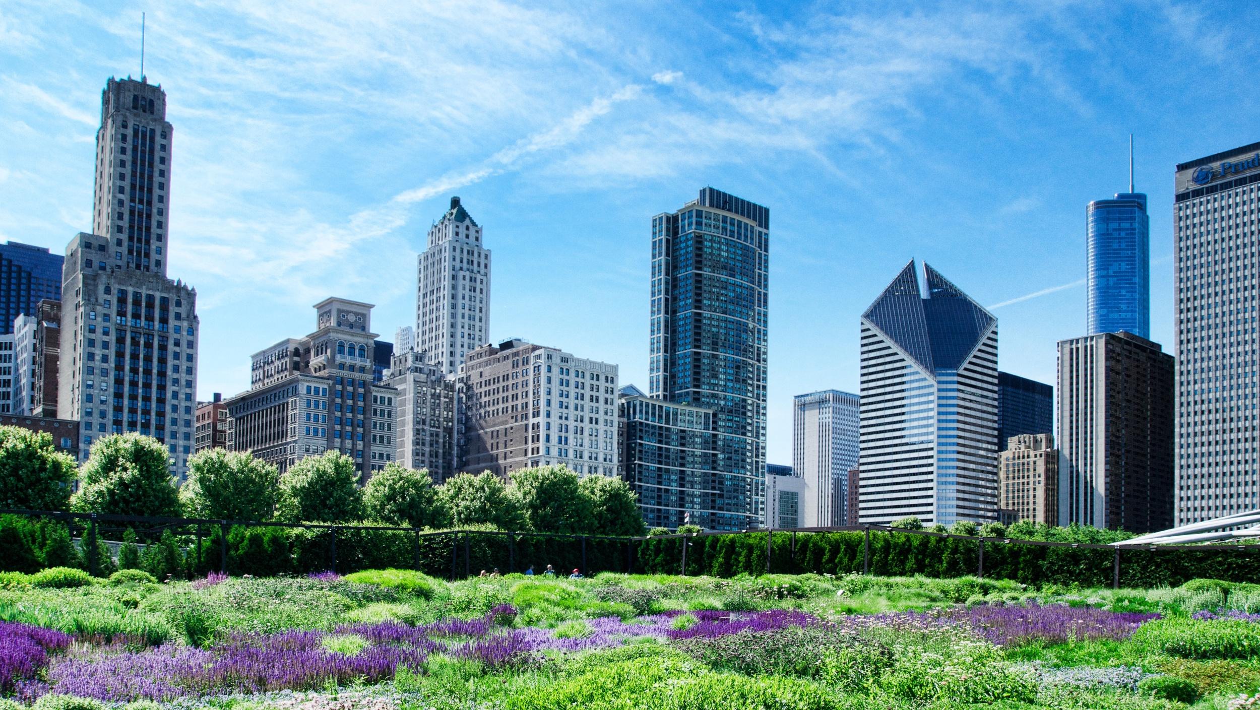 Chicago 19.jpg