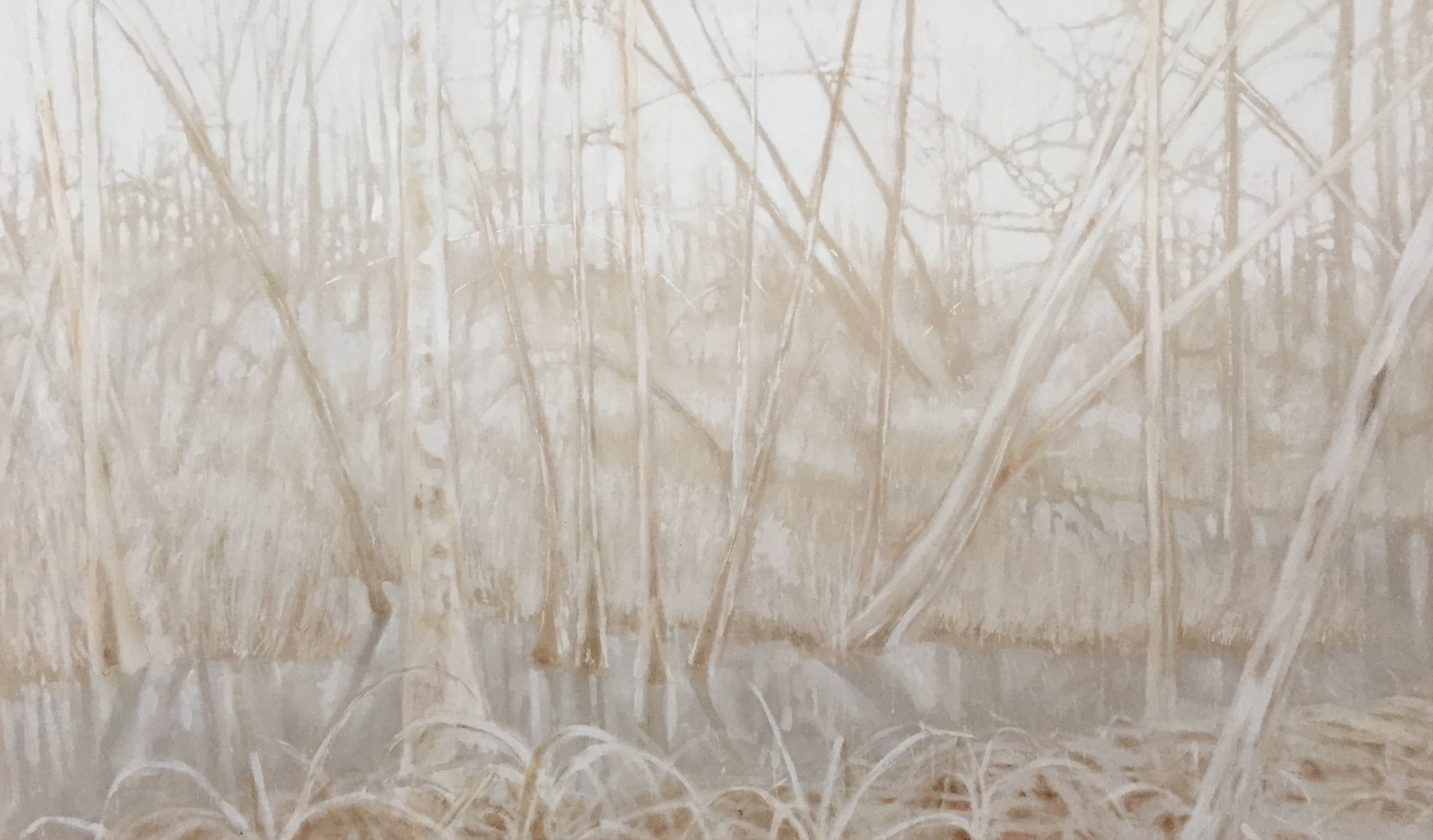 Swamp in White oil on raw canvas 4'x6'
