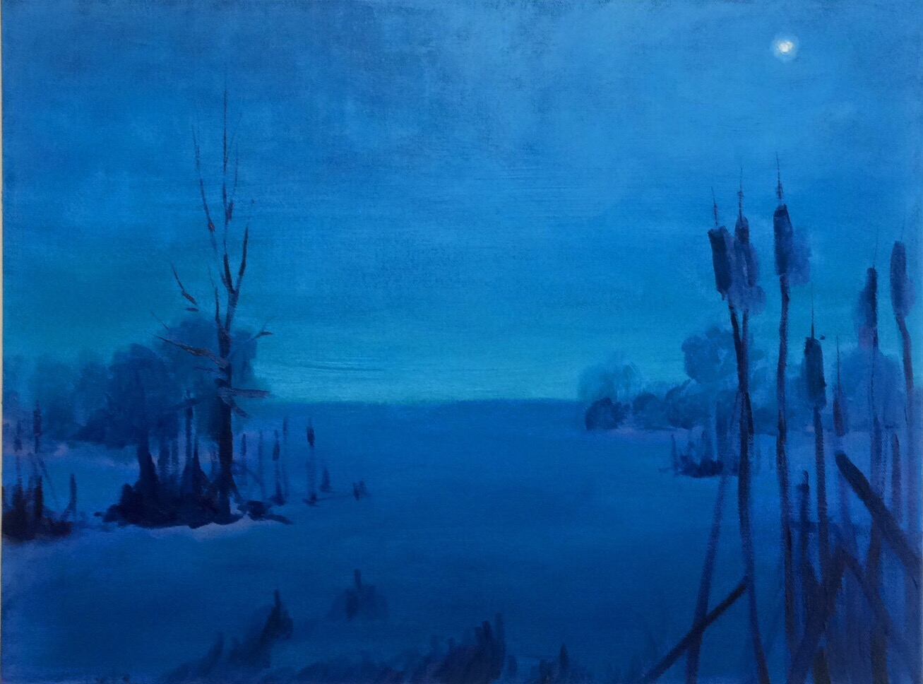 "Winter Night Swamp oil on canvas 12""x18"""