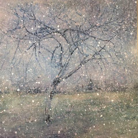 "Gary's Tree oil on canvas 30""x30"""