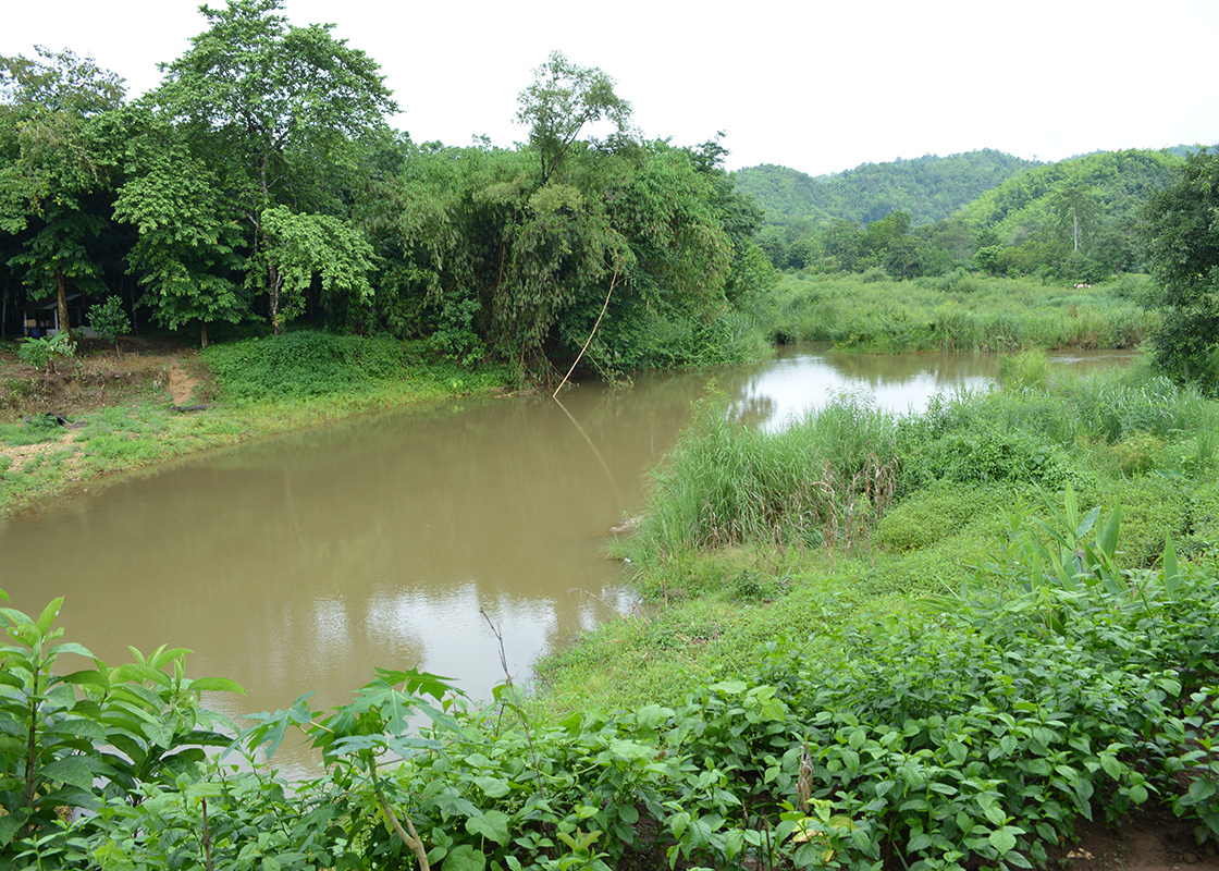 A small river that is the water source of Ban Mai