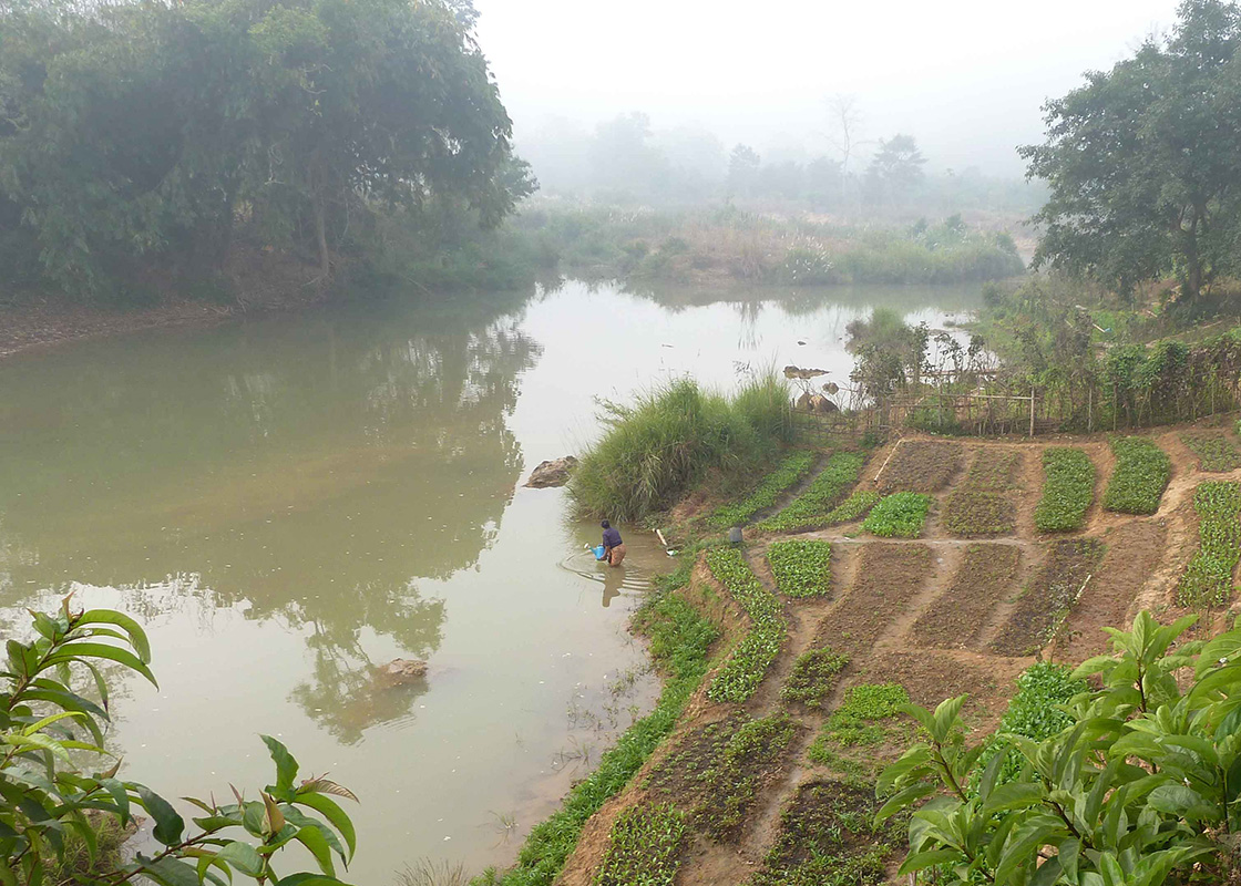 A local using the river water for her garden