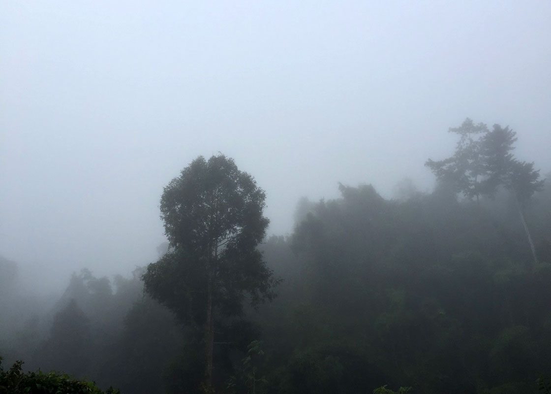 A very foggy morning in Sangkhlaburi, a sign of winter's arriving.