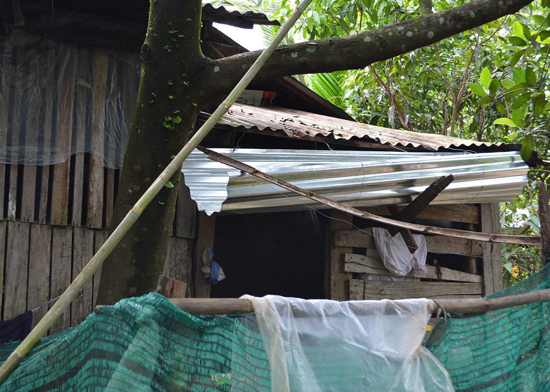 Rainwater collection at a household in Three Pagodas Pass