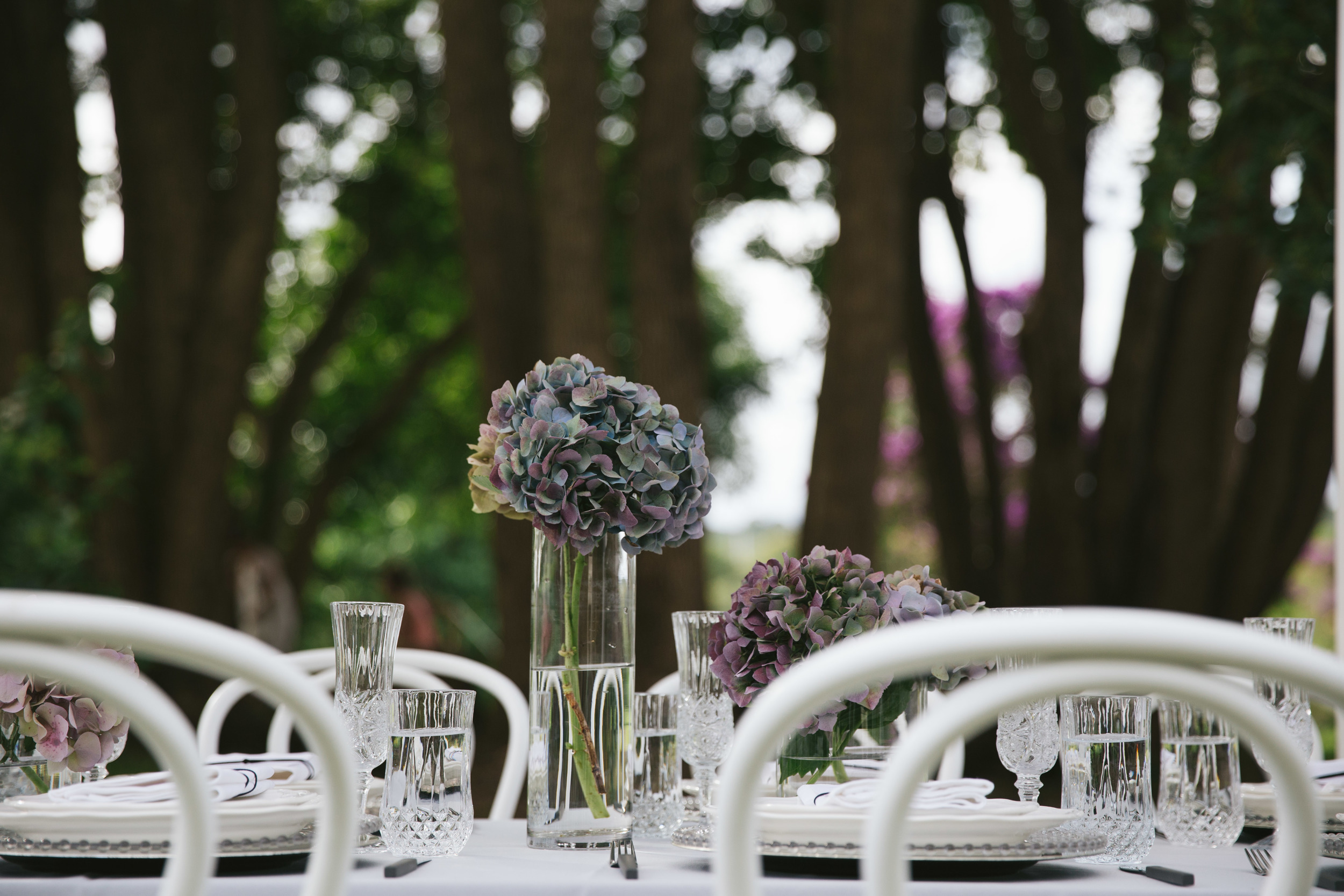 The Wedding Harvest-7934.jpg