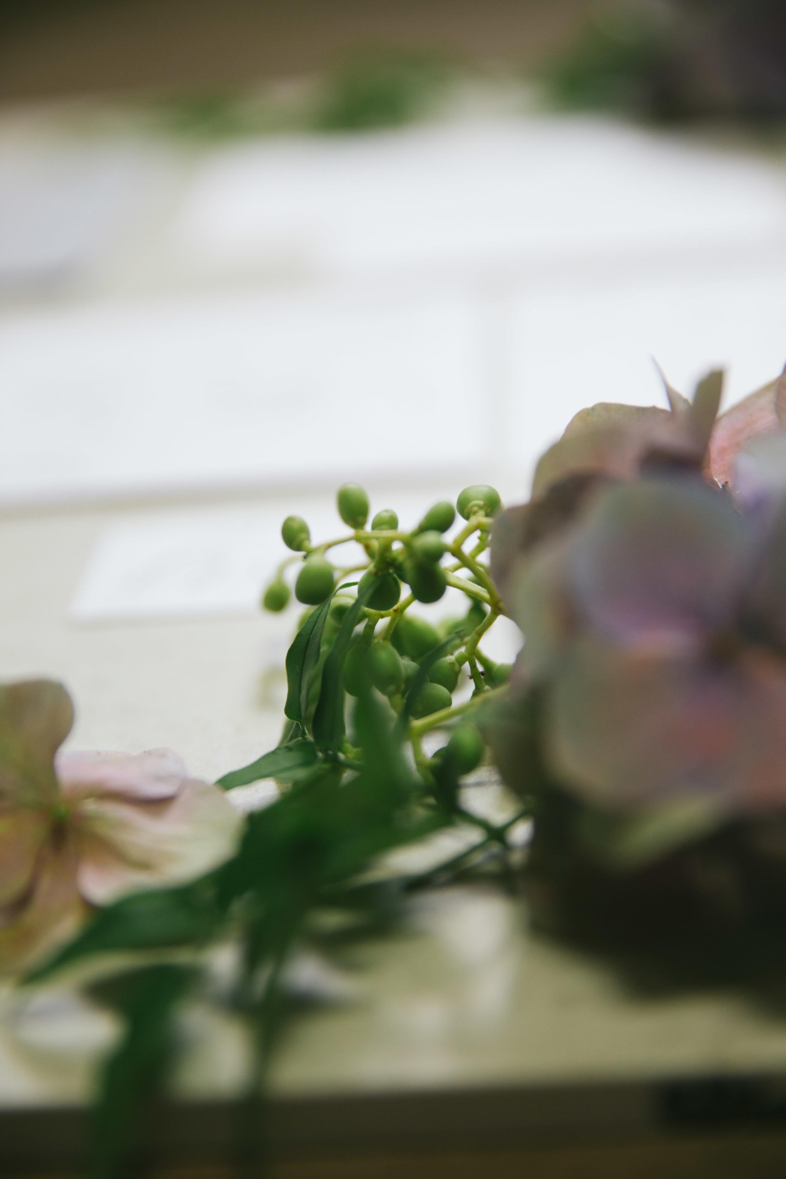 The Wedding Harvest-8024.jpg
