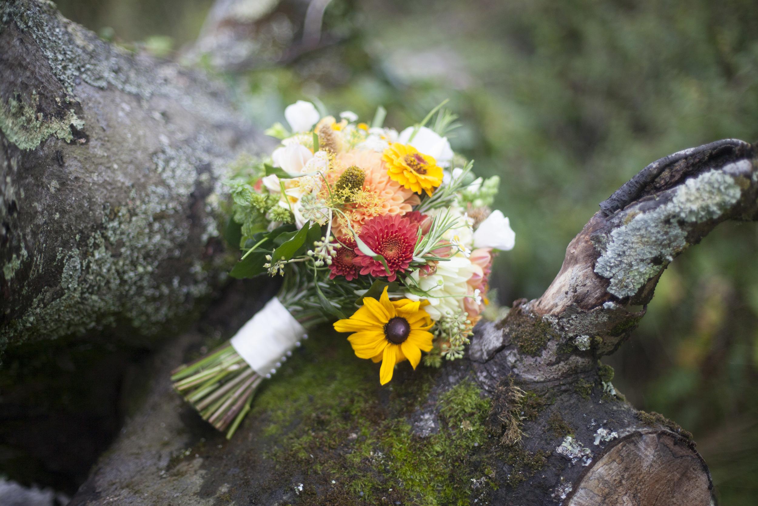 Wendy-Alexx-Fforest-Wedding-_54.jpg
