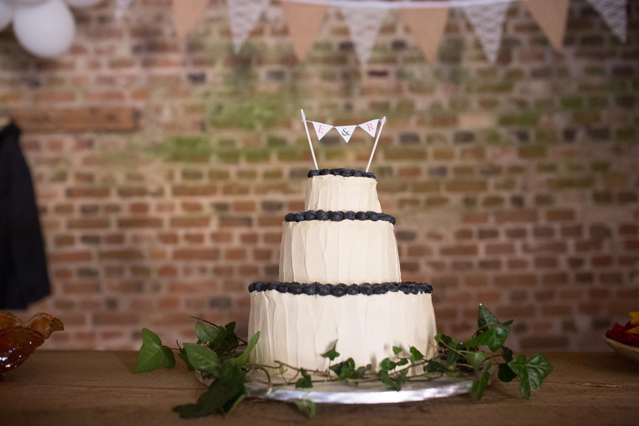 Elisa-Ryan-Rustic-Wedding-Blog-178.jpg