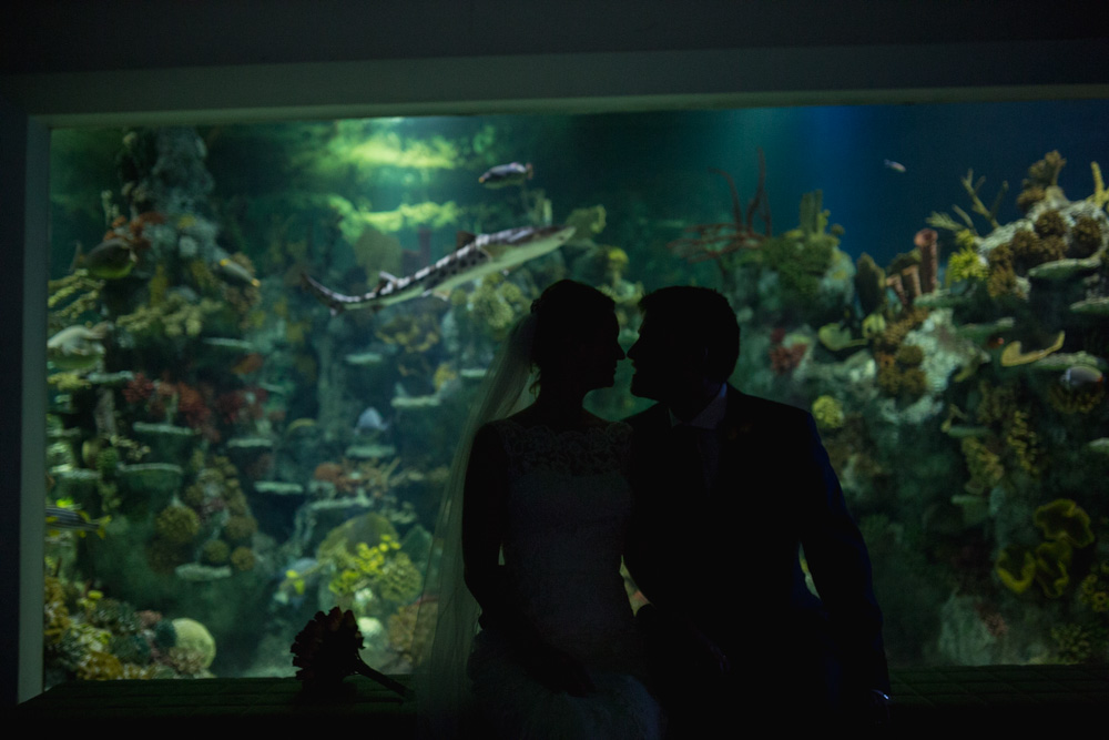 At-Bristol-Planetarium-Wedding-67.jpg