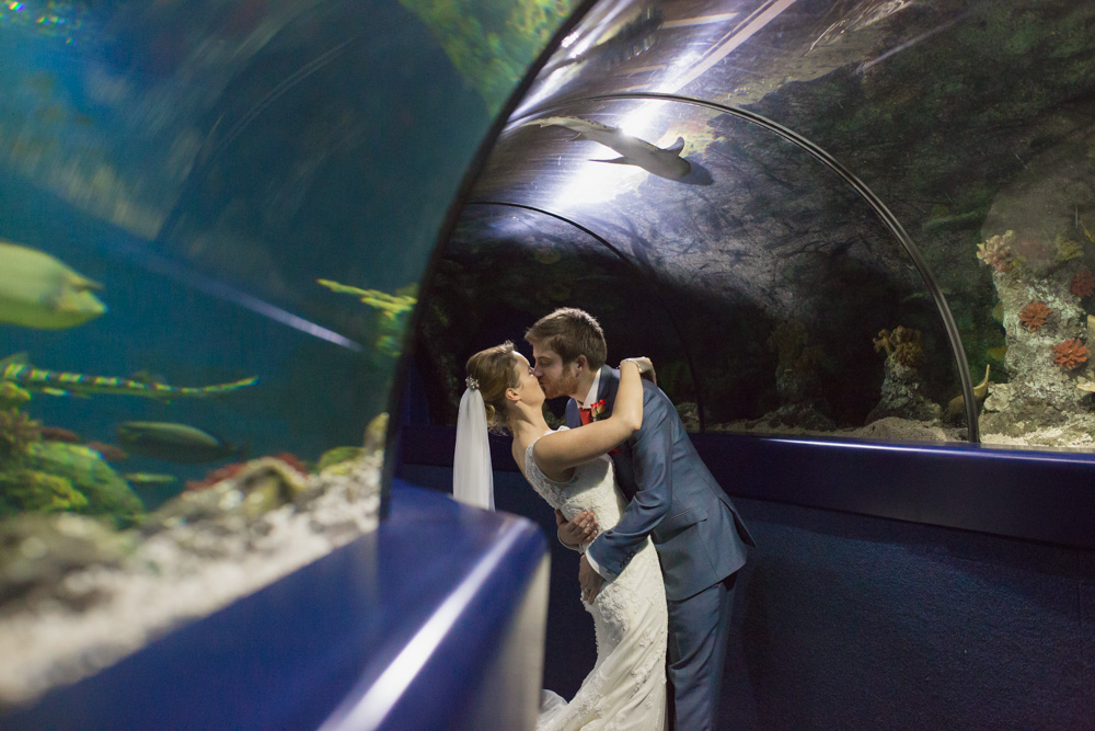 At-Bristol-Planetarium-Wedding-66.jpg