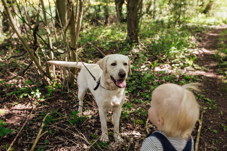 FamilyPhotographerinShropshire-16.jpg