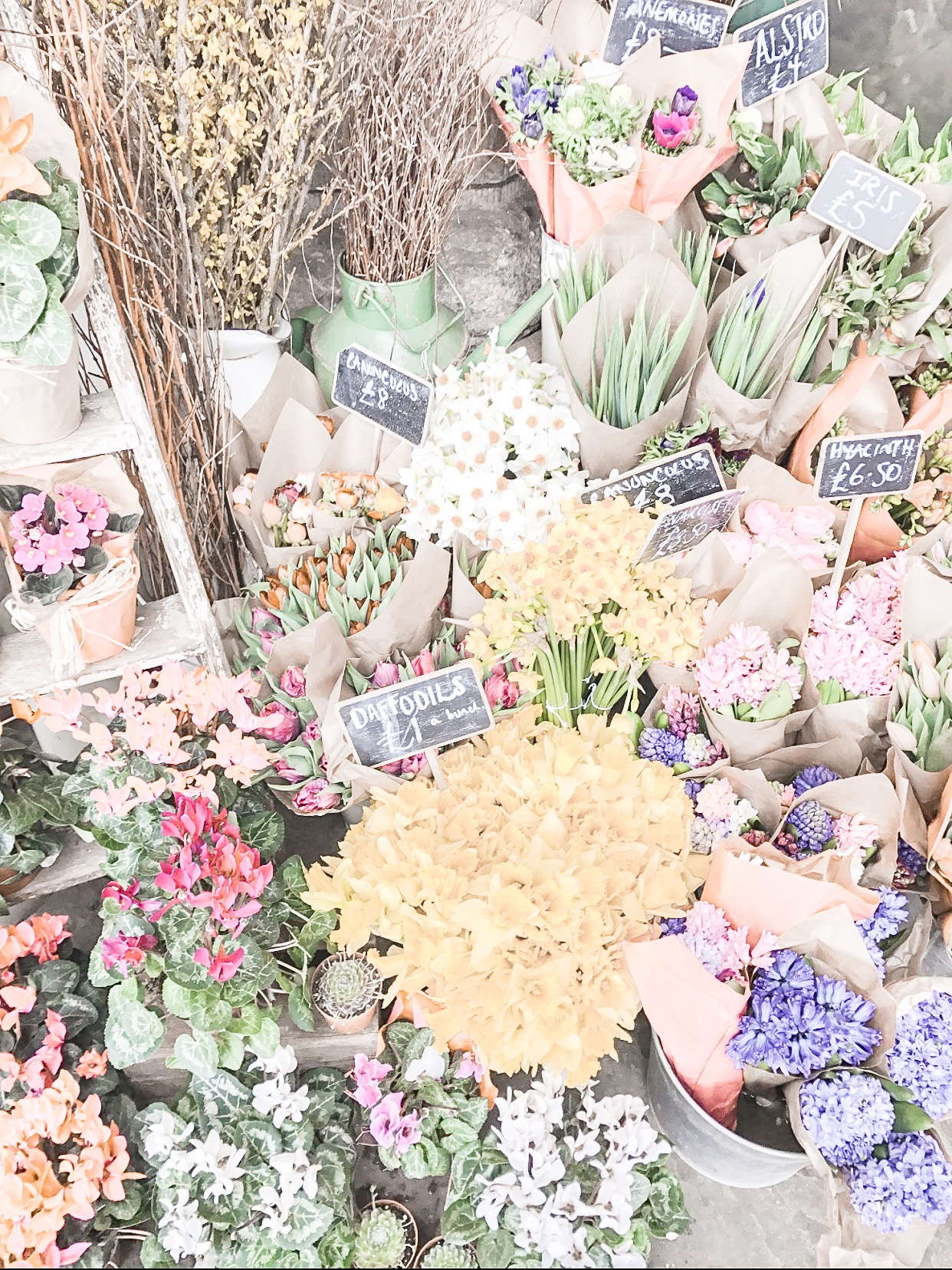Flowers at a market stall Pouss Design