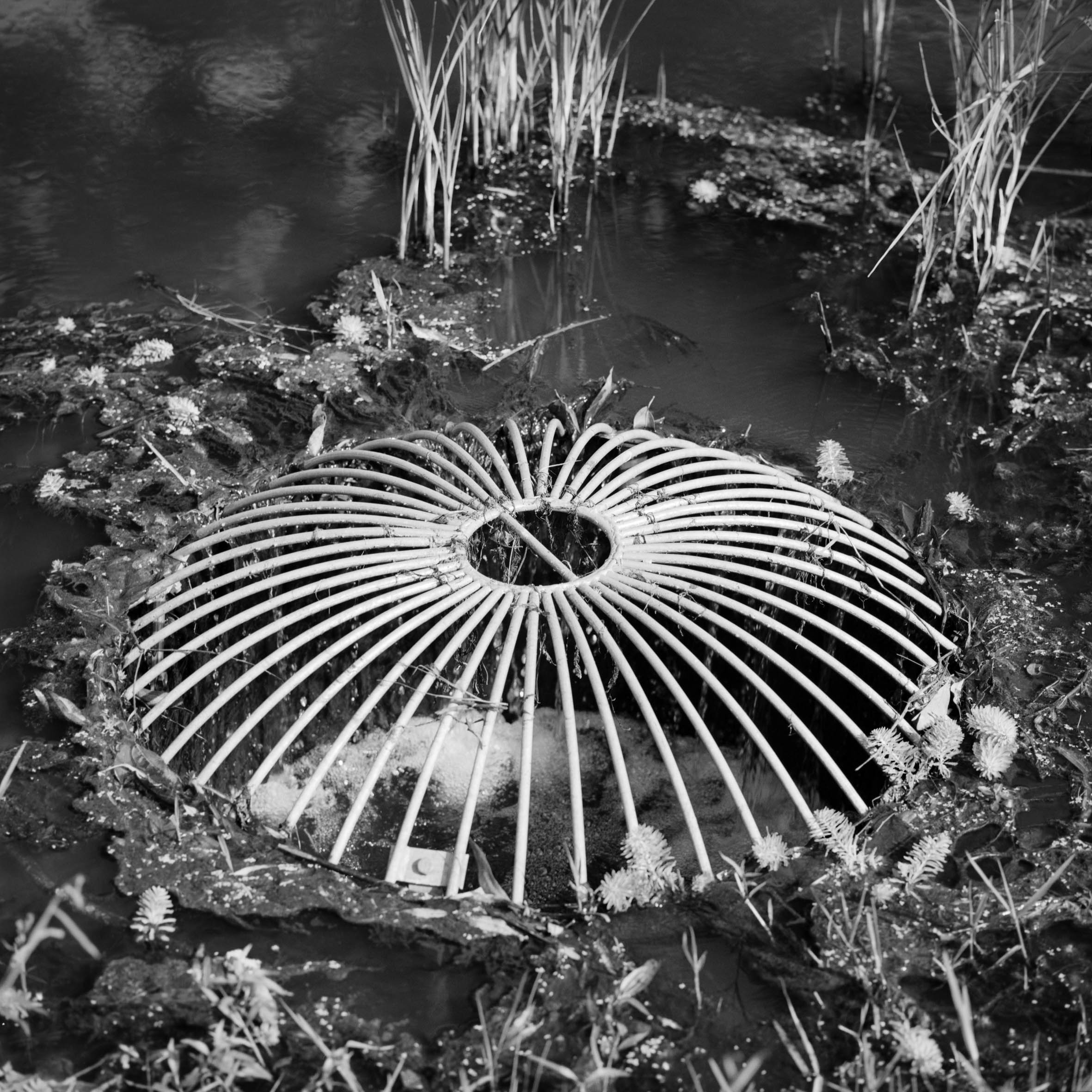 Stormwater Reserve II   2016,  C-Type print,  edition of 5 + 1 AP,  280mm x 280mm
