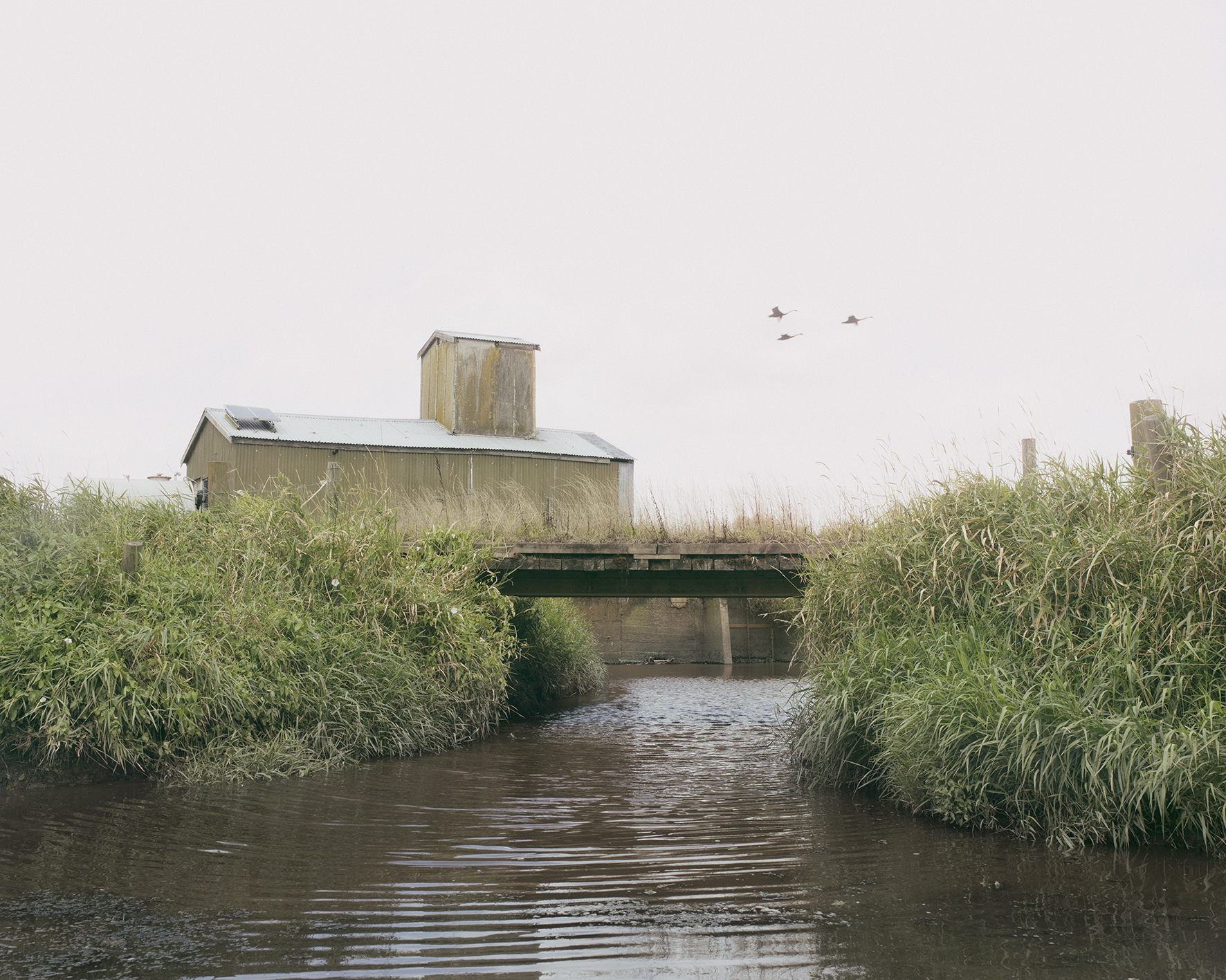 pumphouse low res.jpg