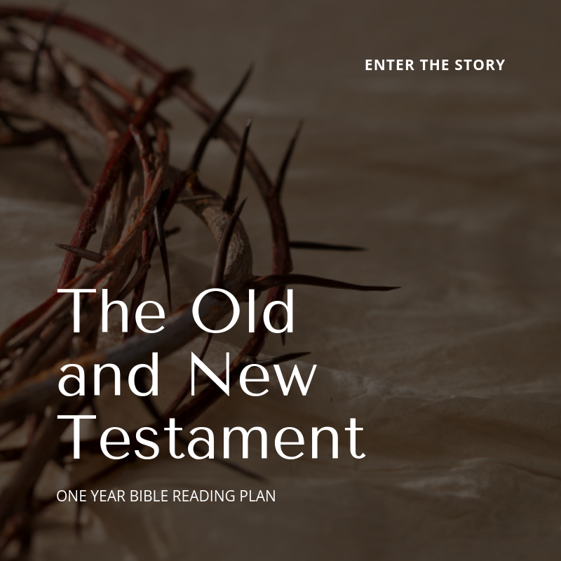 - If you are fairly familiar with scripture or have completed the New Testament reading plan and are ready to take your relationship with Jesus to the next level, then read both Old & New Testament portions of the daily bible reading plan.