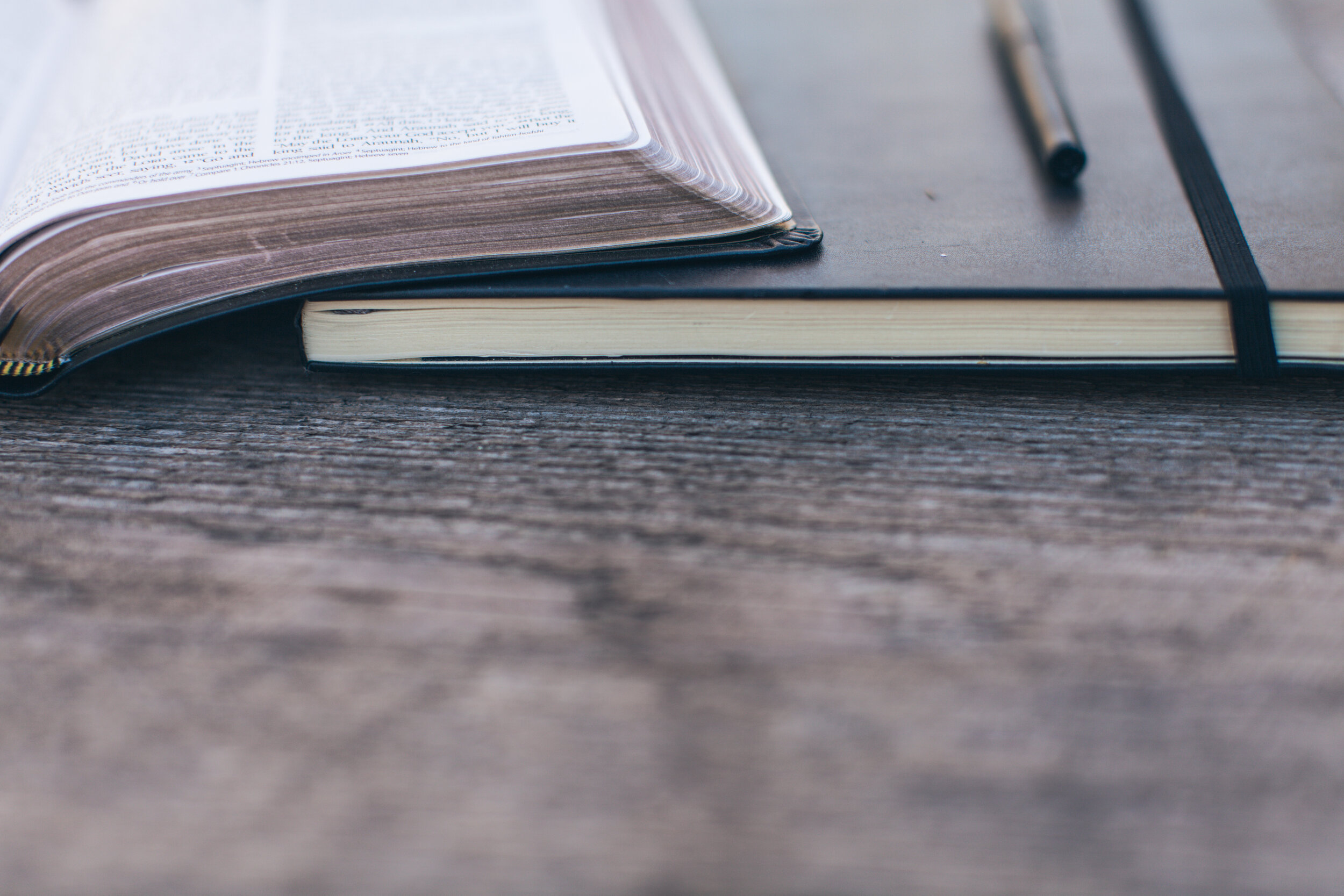 Life In Christ - Daily Devotional Journal