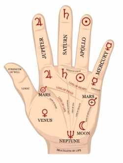 palm.hand.jpg