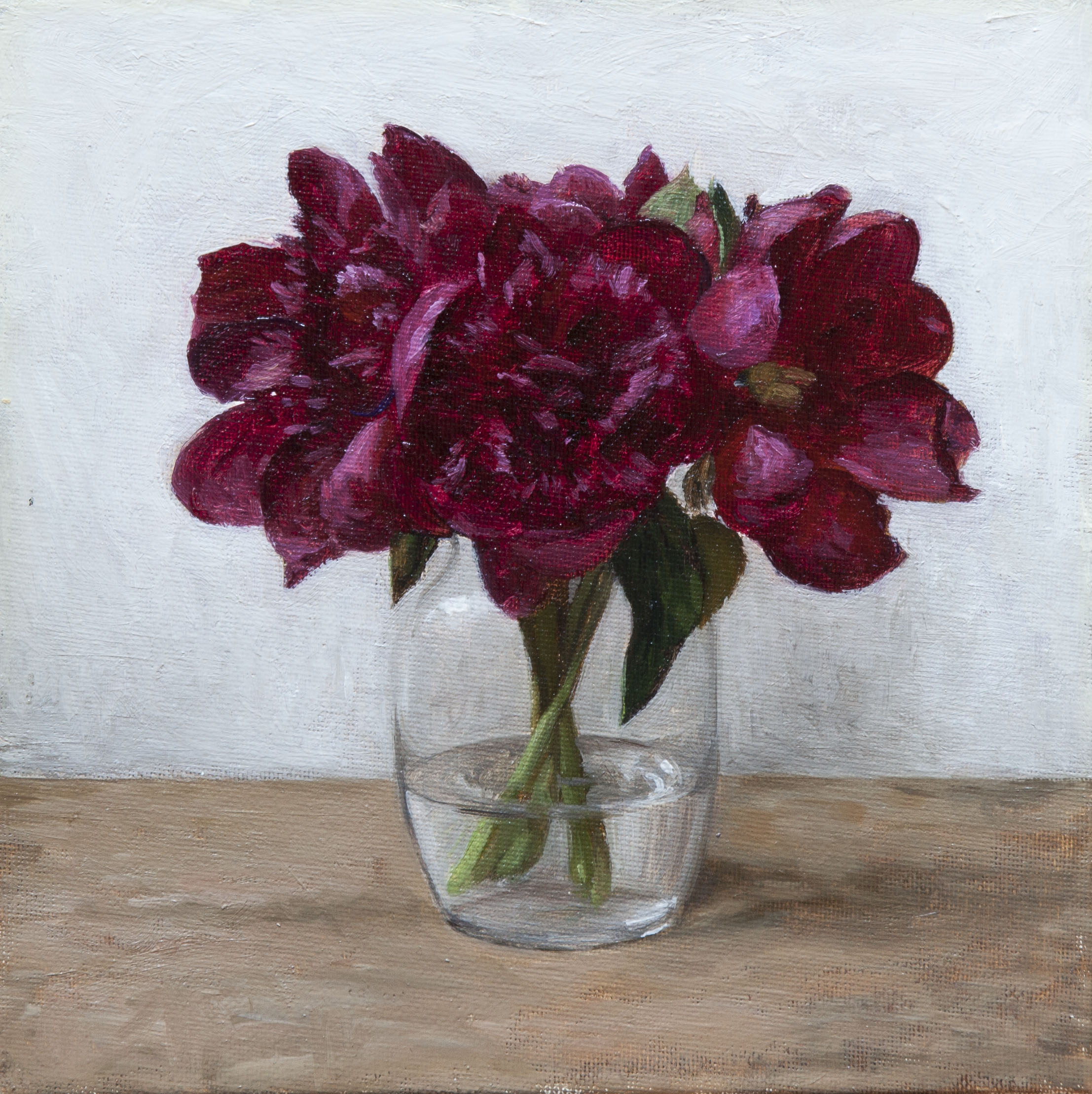 Pink Peonies in a Vase. 8x8. Oil on Panel.