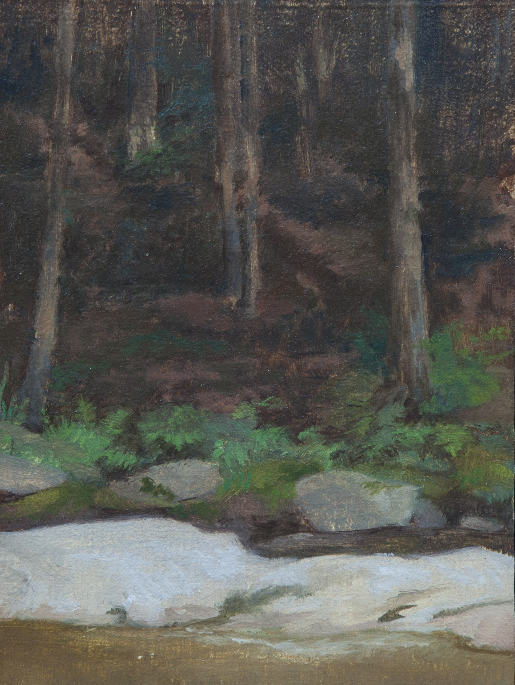 Forest Interior. 6x8. Oil on Canvas.