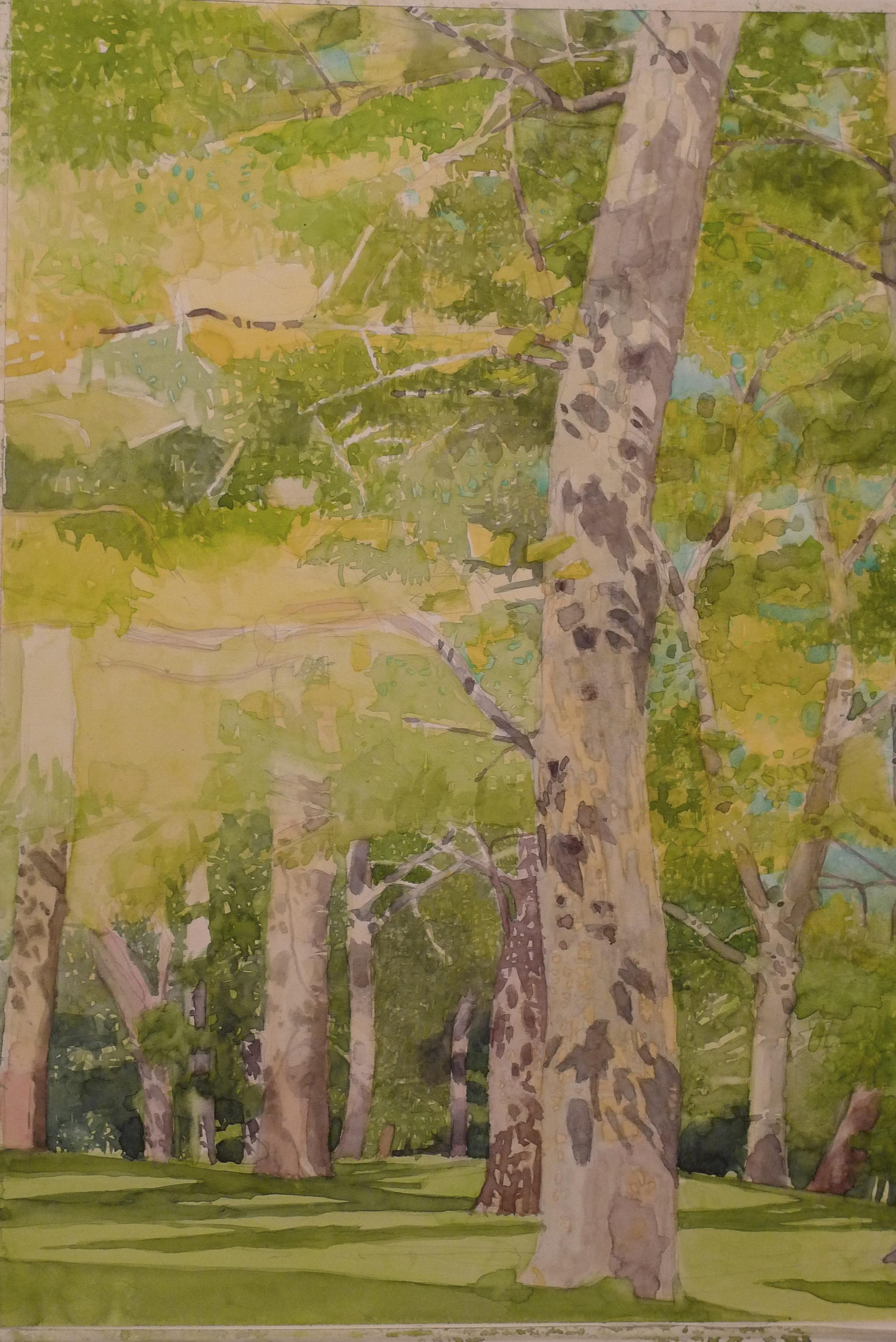 Watercolor on paper 14 x 17 inches Tarek Ashkar,2011