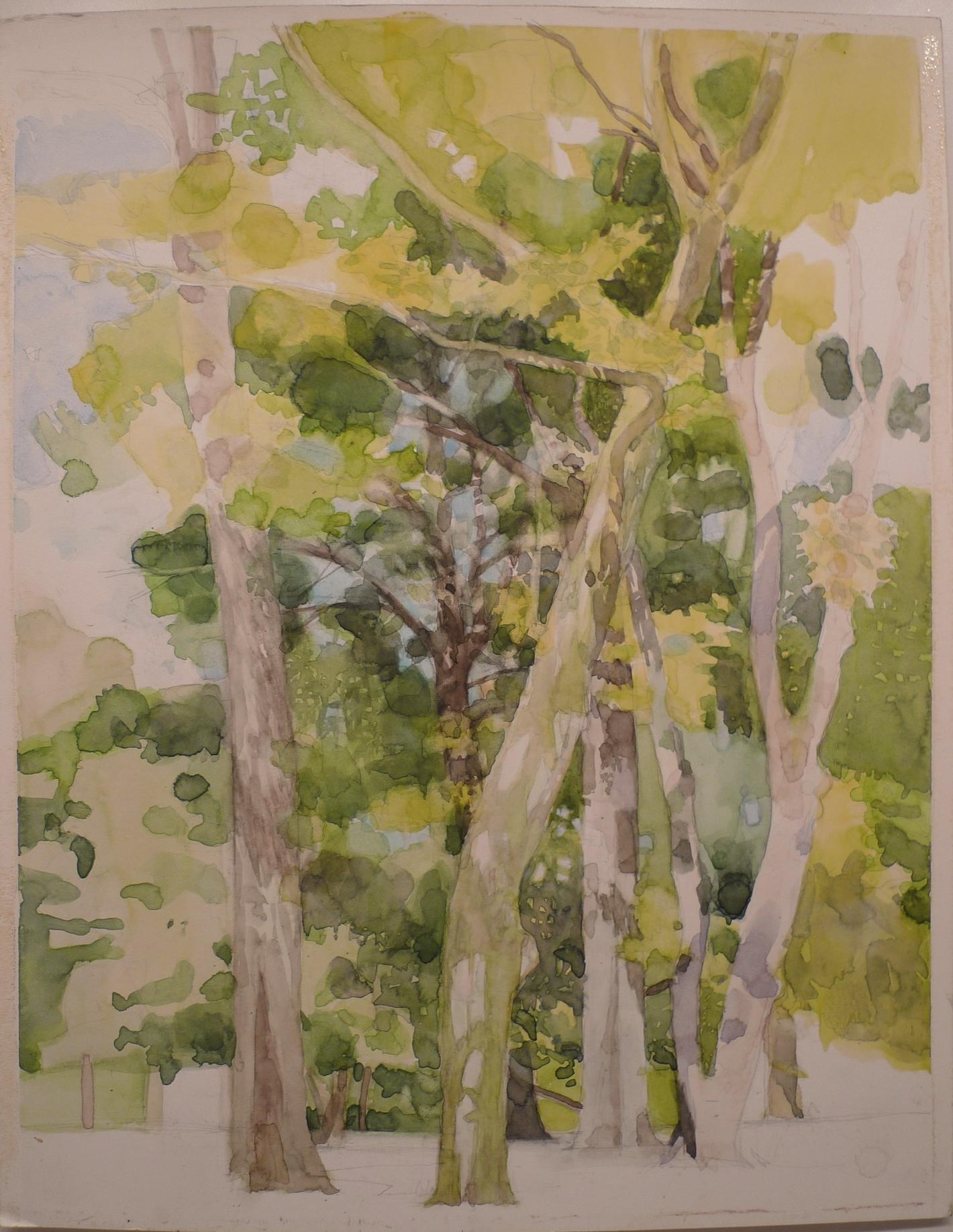 Watercolor on paper 11 x 14 inches Tarek Ashkar,2007