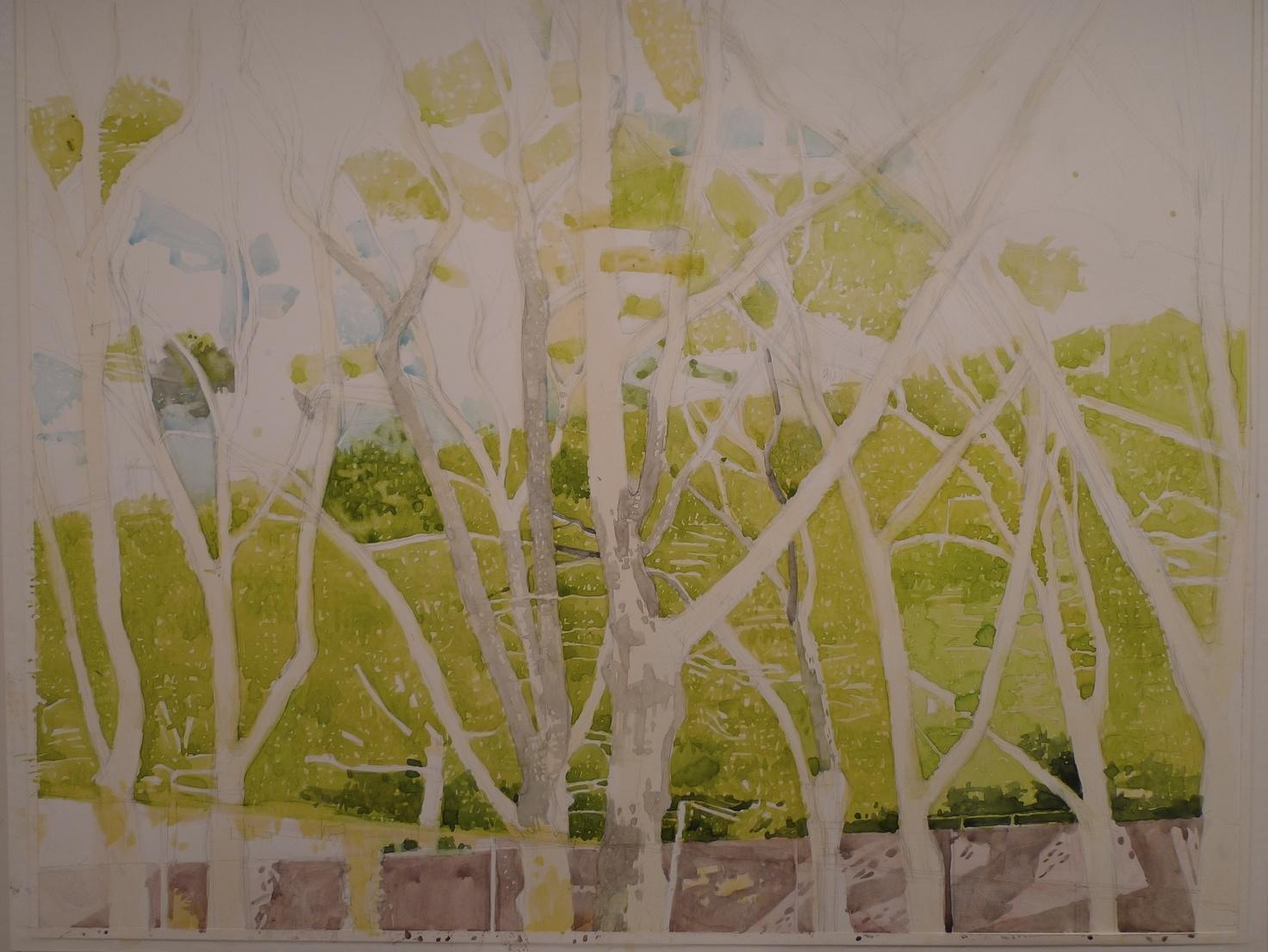Watercolor on paper 17 x 21 inches Tarek Ashkar,2014