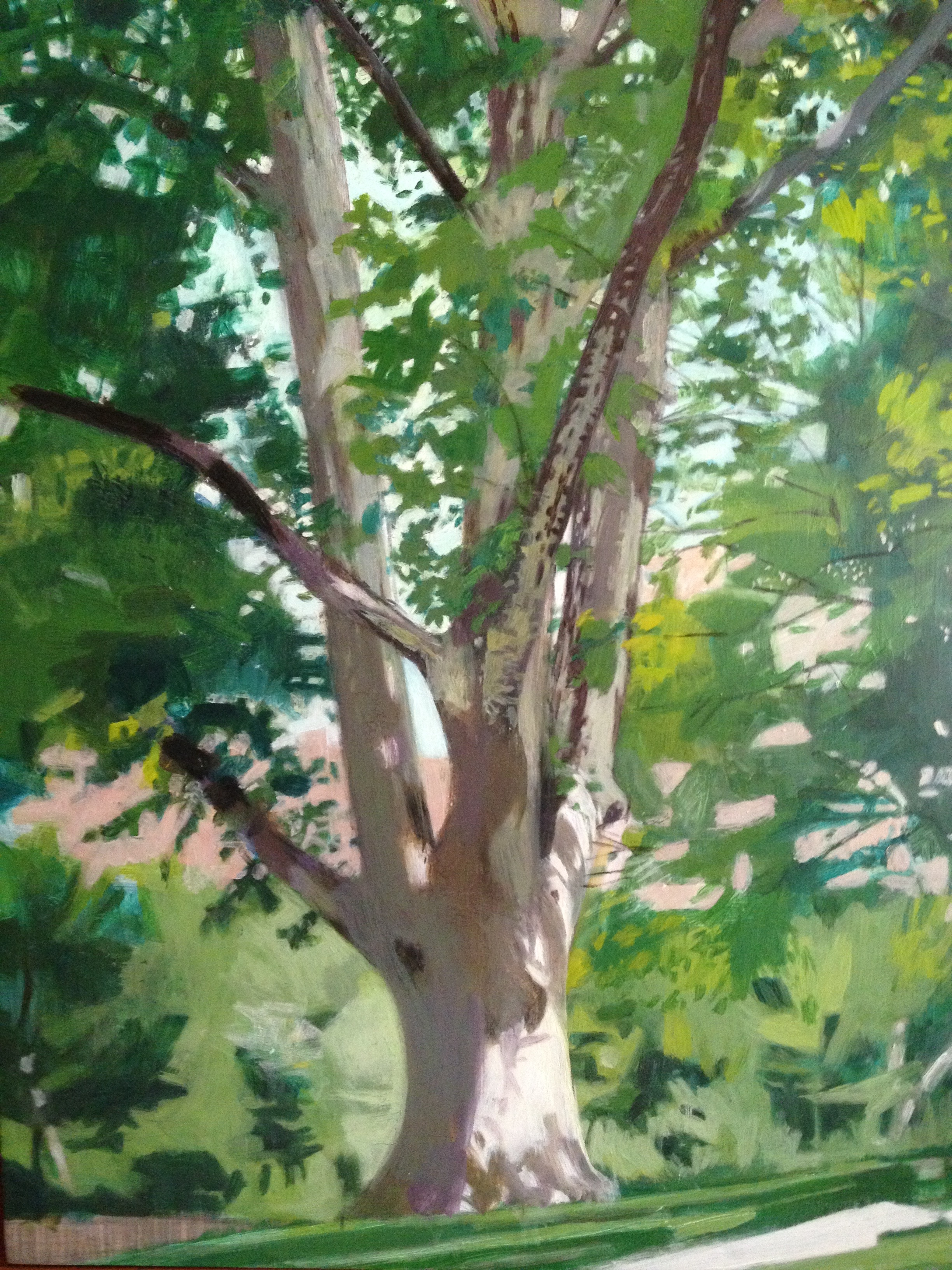 Watercolor on paper 12 x 9 inches Tarek Ashkar,2015