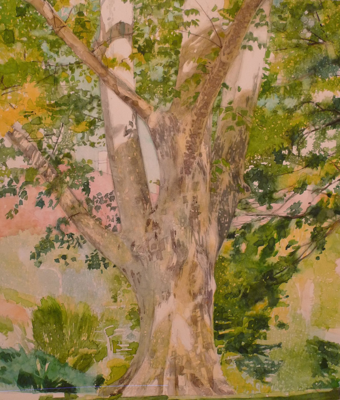 Watercolor on Bristol board 14 x 17 inches Tarek Ashkar, 2016