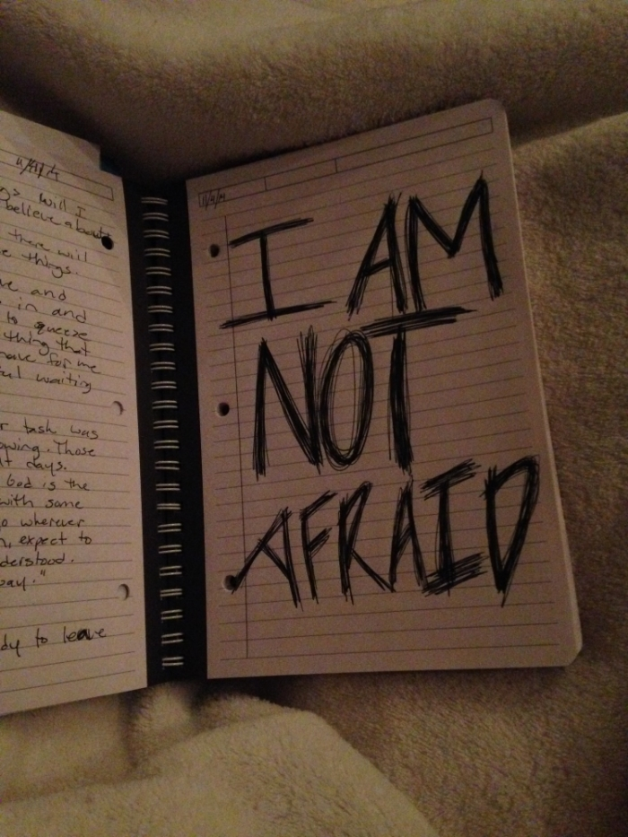 A glimpse at my journal entry for 11/4/14