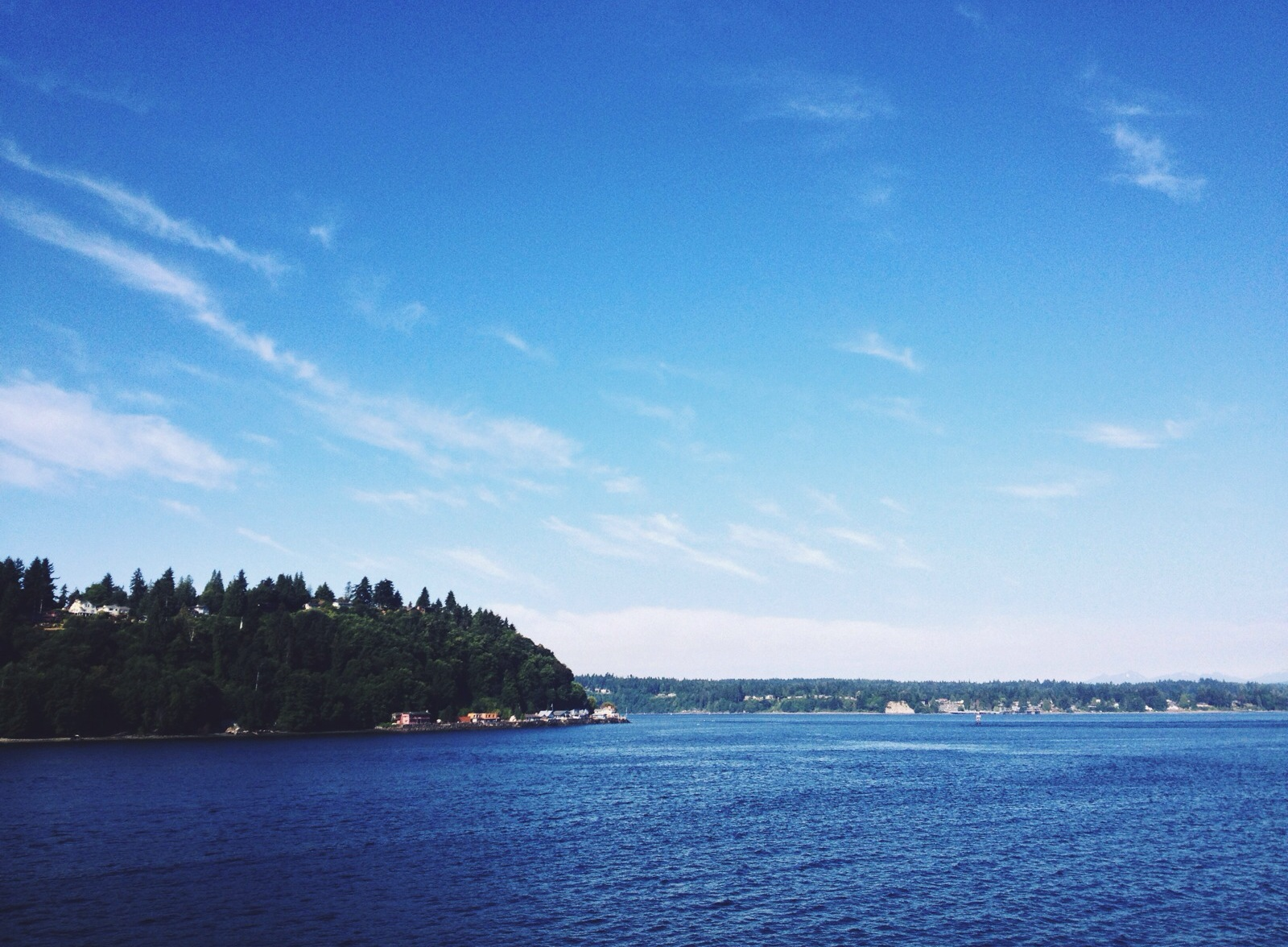 On Sunday, I took the ferry over to Vashon Island for a Slow Food visit to Kurtwood Farms.