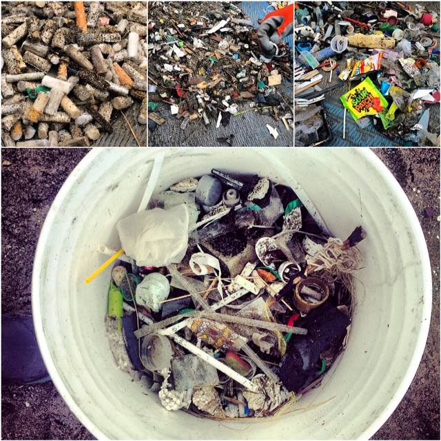 garbage from beach cleanup.jpg