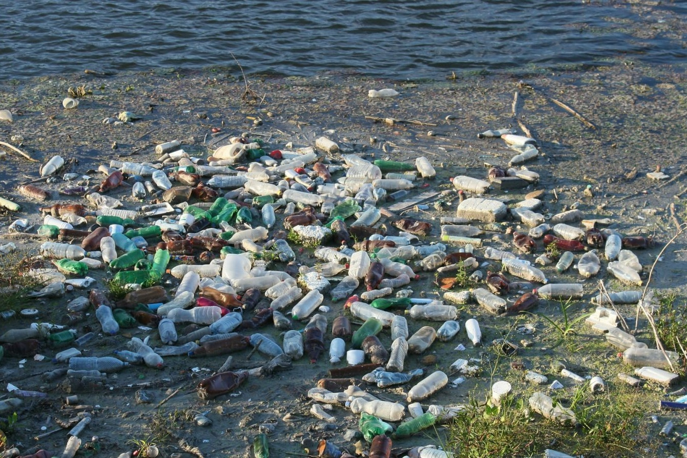 How Does Plastic Enter The Ocean? -