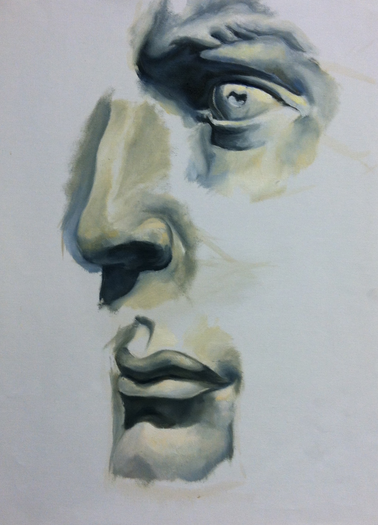 Highschool Facial Studies. Oil Painting